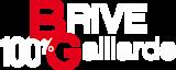 100% Gaillard's Company logo
