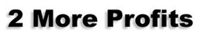 2 More Profits's Company logo