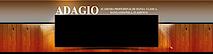 Academia Profesional De Danza Y Baile Adagio's Company logo