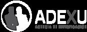 Adexu Detectives's Company logo