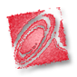 Affinitymarketingservices's Company logo
