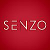 Agence Digitale Senzo's Company logo