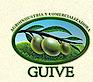 Agroindustria Y Comercializadora Guive E.i.r.l's Company logo