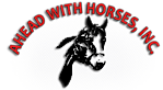 Aheadwithhorsesla's Company logo