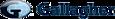 Bpcinc's Competitor - Gallagher logo