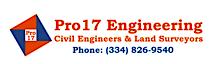 Alabama Expert Witness's Company logo