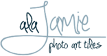 Alajamie/jamie Jamison's Company logo