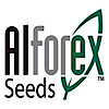 Alforex's Company logo