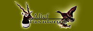Alief Taxidermy's Company logo