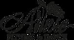 Allure Fitness & Dance's Company logo