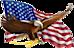 Ettaxi Reno's Competitor - Americandispatch logo