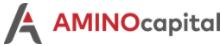 Amino Capital's Company logo