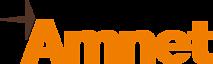 Amnet Systems Pvt. Ltd.'s Company logo