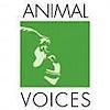 Animal Voices's Company logo