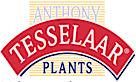 Anthony Tesselaar Plants's Company logo