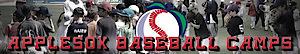 Apple Sox Baseball Camps's Company logo
