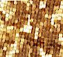 Appleseed Realty's Company logo