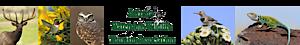 Arizona Watchable Wildlife Tourism Association's Company logo