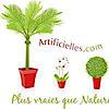 Artificielles's Company logo