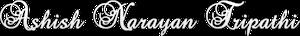 Ashish Narayan Tripathi's Company logo