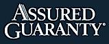 Financial Security Assurance's Company logo