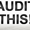 Audit This!'s Company logo