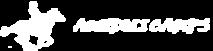 Aundolicamps's Company logo