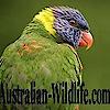 Australian-wildlife's Company logo
