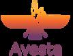 Avesta Computer Services Ltd.'s Company logo
