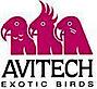 Avitech Exotic Birds,LLC's Company logo