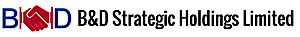 B  D Strategic Holdings's Company logo