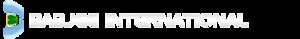 Babjee International Center's Company logo