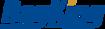 Bag King Logo