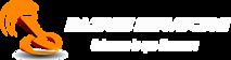 Baires Servicios's Company logo