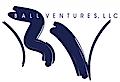 Ball Ventures's Company logo