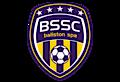Ballston Spa Soccer Club's Company logo