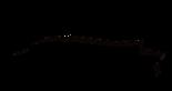 Bazarcito Monterrey's Company logo