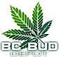 BC Bud Depot's Company logo