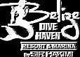 Belize Dive Haven's Company logo
