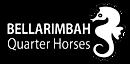 Bellarimbah Quarter Horses's Company logo