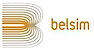 AppScape's Competitor - Belsim logo