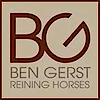 Bengerstreininghorses's Company logo