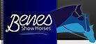 Benes Show Horses's Company logo