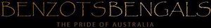 Benzots Bengals's Company logo