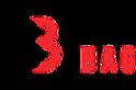 Berg Bag's Company logo