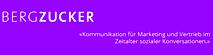 Bergzucker's Company logo