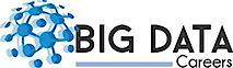 Big Data Careers's Company logo