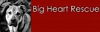 Big Heart Rescue Society's Company logo