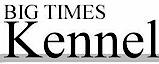 Big Times Kennel's Company logo