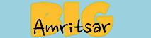 Bigamritsar's Company logo
